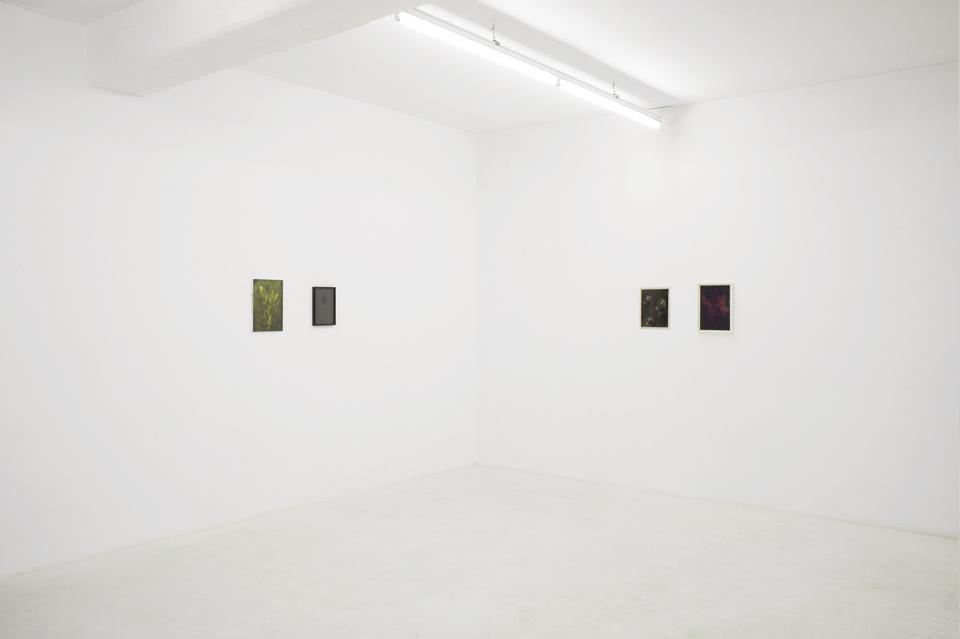 installation view Lukas Schmenger & Philip Seibel: Erkennung eines Lächelns Sammlung Philara, Düsseldorf